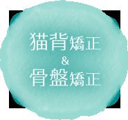 佐賀市 にいじ接骨院のアプローチ2:猫背矯正&骨盤矯正